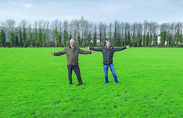 New home for equine centre in Ballyowen gets the green light