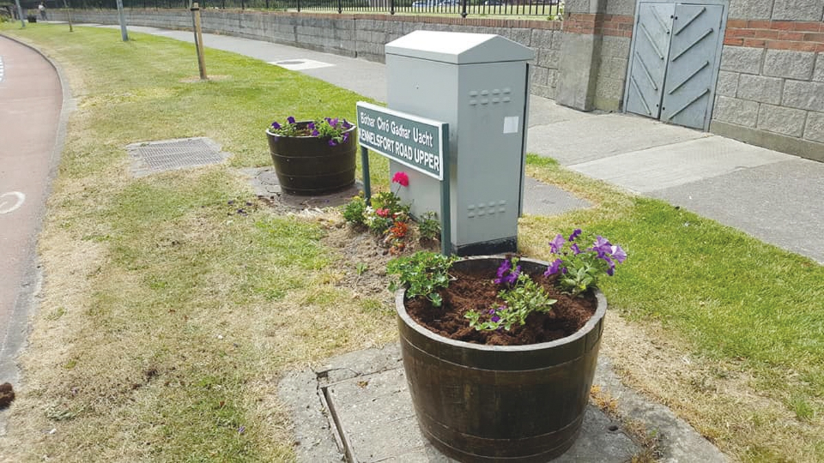 Anger as plants stolen from planters