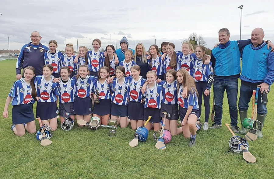 Ballyboden girls complete league and c'ship double