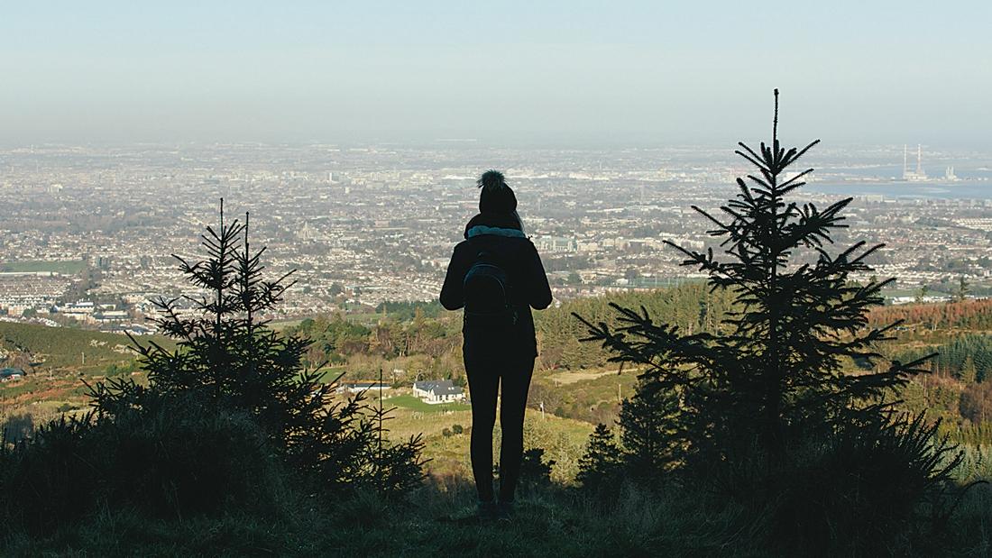 Dublin Mountains undergoing  a massive  makeover