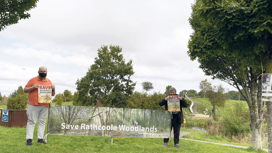 Concerns at plans to develop 250 houses on woodlands site